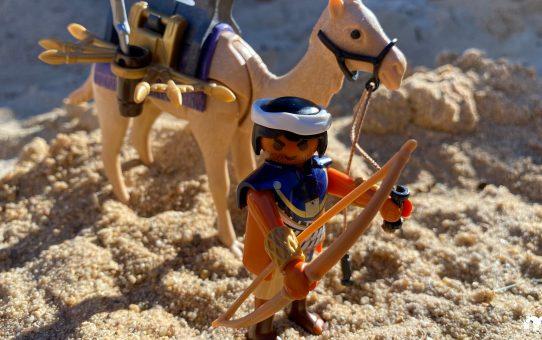 Ein Kamel auf Reisen